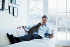 Homme dans son canapé avec sa tablette et son chat